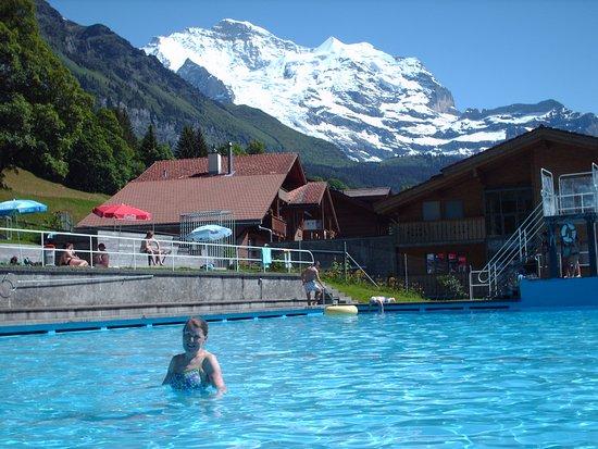 Hotel Falken Wengen: The pool.