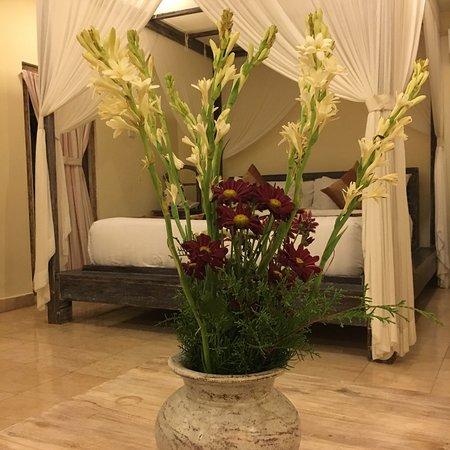 Royal Villa Jepun: Мои прекрасные выходные!