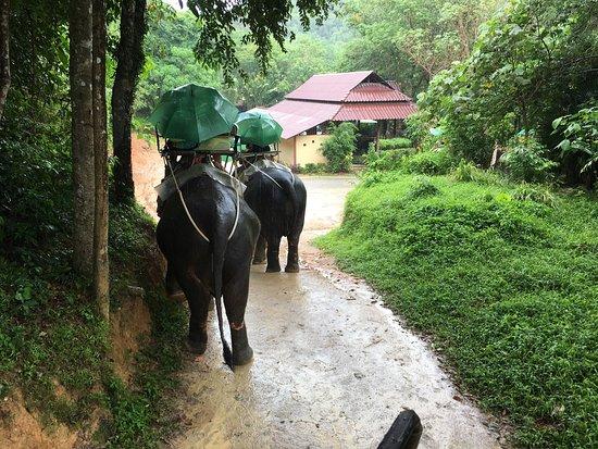 Chalong, Tajlandia: photo0.jpg