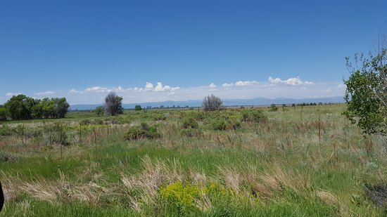 Cherry Creek State Park Campground Image