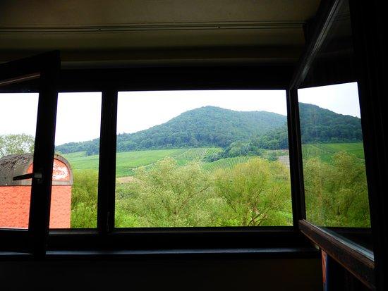 Mayschoss, Tyskland: Zimmer Fenster