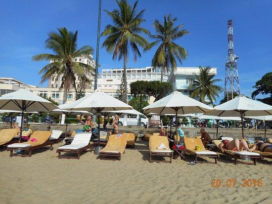 Michelia Hotel : 18 зонтиков, около каждого по два лежака, есть дополнительные матрацы. Полотенца, лежаки - беспл