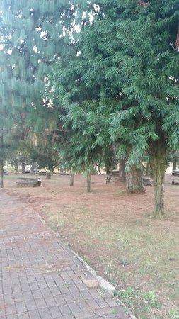 Sabie, Zuid-Afrika: pathway