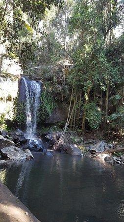 Mount Tamborine, Australien: 20160725_125643_001_large.jpg