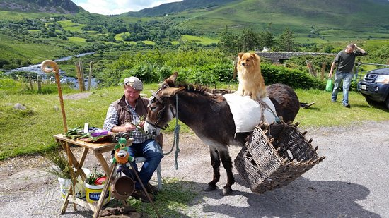 Whispering Pines B&B: Many scenic pull offs along the Ring of Kerry