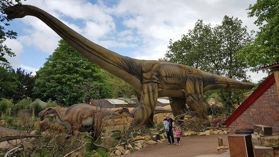 Bewdley, UK: West Midland Safari and Leisure Park