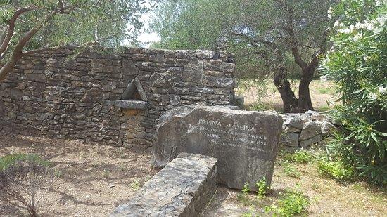 Kastel Novi, Croacia: Biblical Garden Stomorija