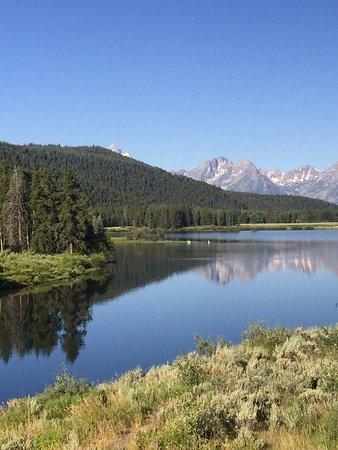 Wild Things of Wyoming: photo7.jpg