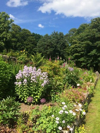Evanton, UK: Garden in bloom