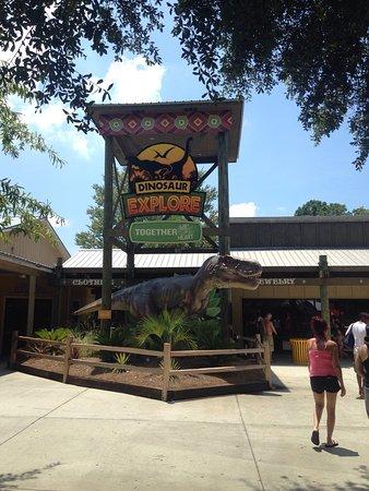 写真Wild Adventures Theme Park枚