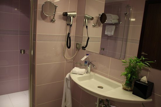 صحار, عمان: Standard Room Wash Room