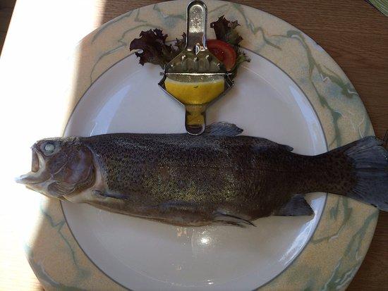 Manderscheid, Duitsland: menu yang harus dicoba: Ikan Forrel dengan mashed potato dan salad