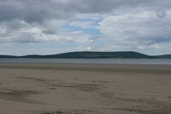 Pembrey Beach with stranded moon jellyfish, looking towards the Gower Peninsula
