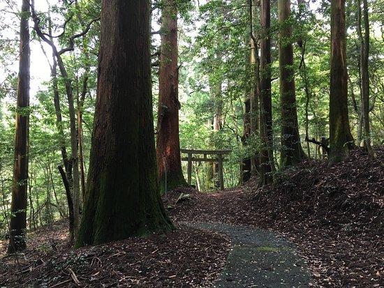 Saiki, Japan: 聖域。