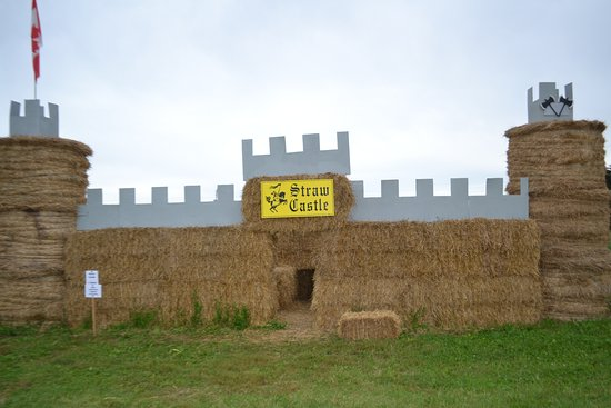 ‪‪Brantford‬, كندا: Visit the straw castle for some fall fun!‬