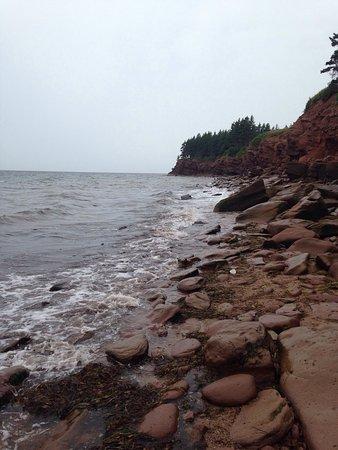 Murray River, Канада: photo3.jpg