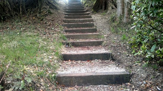 Wicklow, İrlanda: The steps to the top of one of the hills