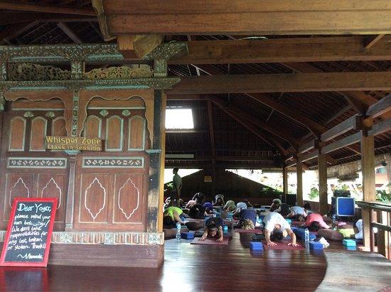The Yoga Barn - Day Classes : photo0.jpg