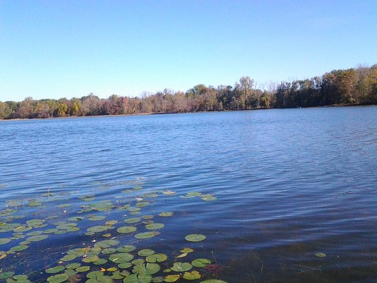 Hillsdale, MI: A lake by the Hunt Club