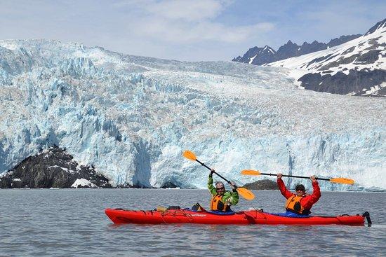 Kayak Adventures Worldwide - Day Trips: Aialik Glacier