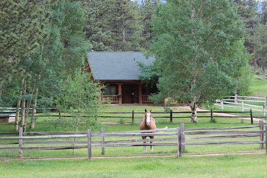 Shawnee, โคโลราโด: Klondike Cabin