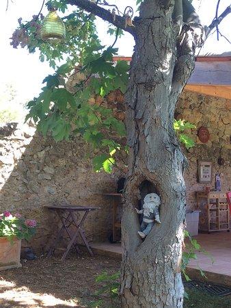 Brignoles, Francja: photo0.jpg