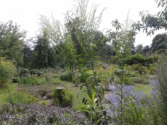 Plon, Tyskland: Gartensicht