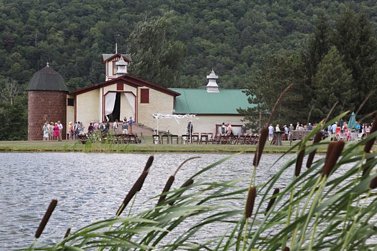 Delhi, NY: Maple Shade Farm (cattail view)