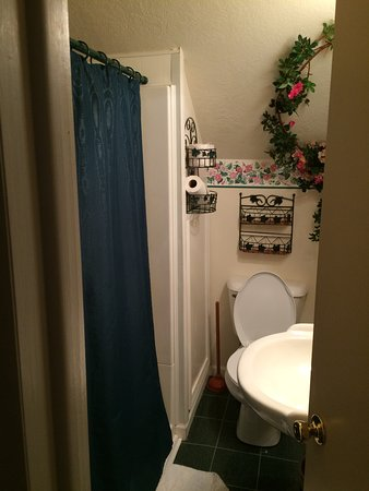Lawrence, Μίσιγκαν: The upstairs Lodge bathroom that had a shower