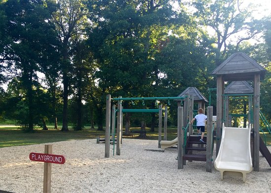 Lake Chicot State Park: Nice place for a picnic and for kids to run and play