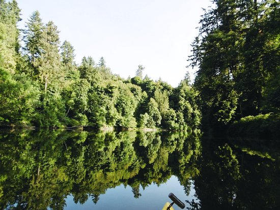 Foto Tualatin Hills Nature Park