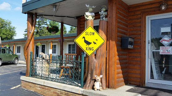 Clarkston, MI: The Duck Crossing signs are there for a reason! You'll see families of ducks!