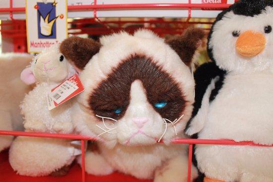 Williamstown, MA: So many stuffed animals