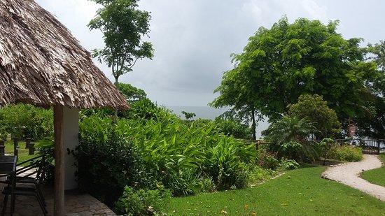 Punta Gorda, Belize: View from pool