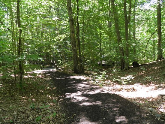 Triangle, فيرجينيا: De quoi se promener