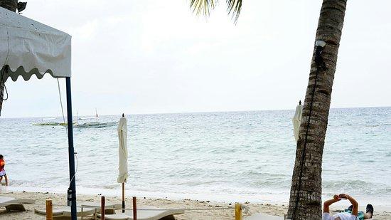 邦勞島張圖片