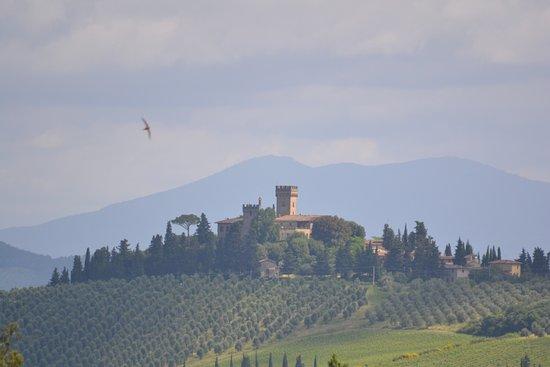 Montespertoli, Italy: Aussicht vom Hotel