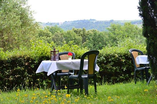 Montespertoli, Italia: Relax im wunderschonen Garten