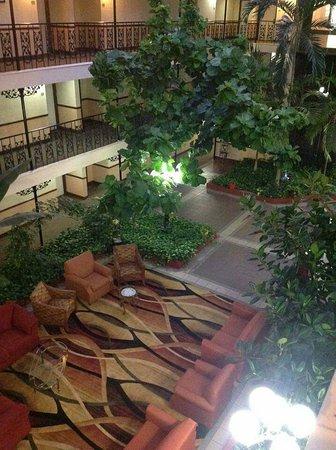 The Alabama Hotel: received_10209048855766179_large.jpg