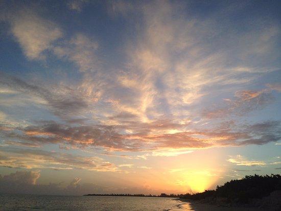 Parrot Cay: Dawn patrol