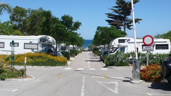 Camping La Bella Vista: view of pitches down to sea