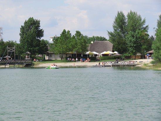 VILA VITA Pannonia: großer Schwimmteich