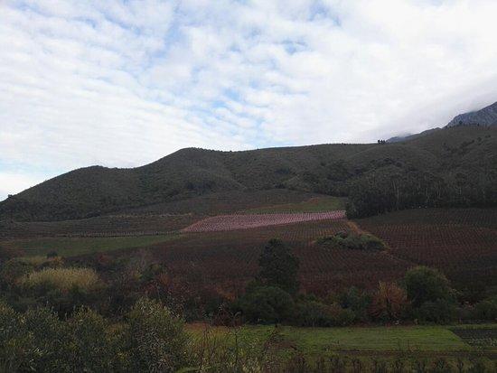 Robertson, Νότια Αφρική: IMG_20160716_094307_large.jpg