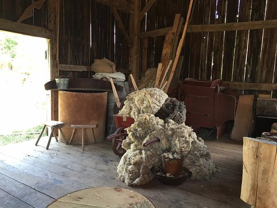 Genesee Country Village & Museum: sheep wool!