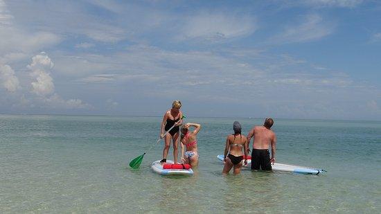 Osprey, FL: Having fun in the water with Kokomo Charters