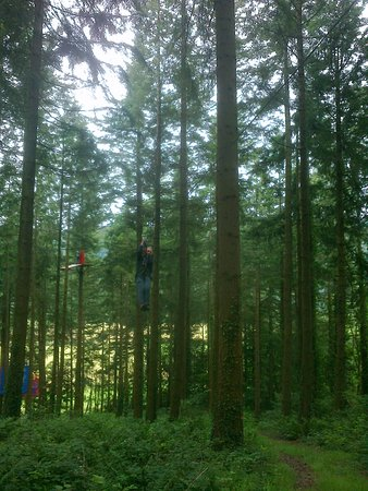 Betws-y-Coed, UK: Travelling down zip wire among the trees.
