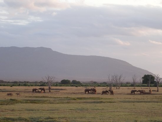 Tsavo National Park East, เคนยา: fantastic landscape