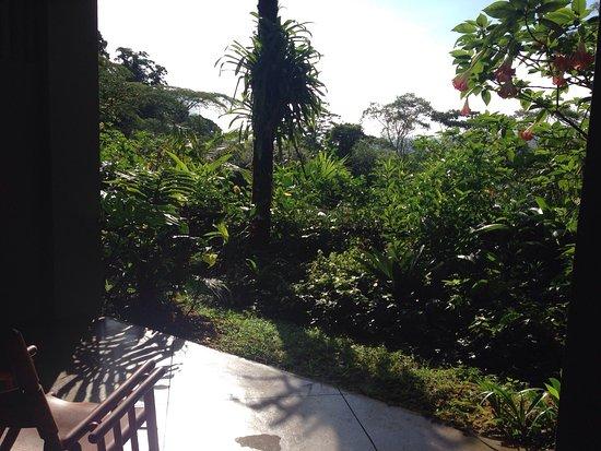 Lost Iguana Resort & Spa