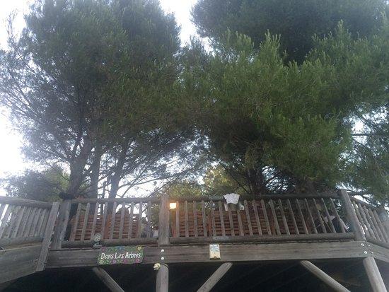 Aubagne, Γαλλία: Dans les arbres