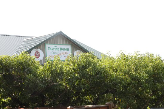 Crozet, Βιρτζίνια: The Tasting Barn Behind a Hedge of???...You guessed it!